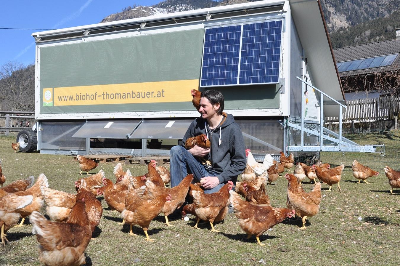 Hühnermobil_Thomanbauer_Kohlmaier_3